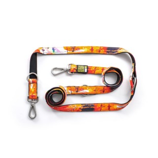 Max & Molly Rio Orange Multi-Function Pet Leash
