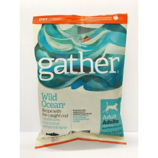 Sample Pack - Gather Wild Ocean COD Recipe 100g Adult Dog Dry Food