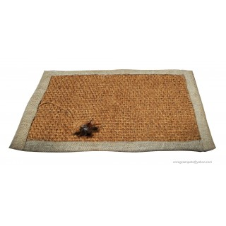 Cocogreen Scratch Mat with Feather Ball