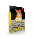 Oven Baked Tradition Chicken Adult Cat Dry Food