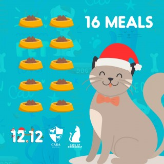 DONATE TO CARA - GREENBELT CATS 16 MEALS OF CAT WET FOOD