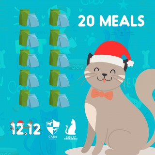 DONATE TO CARA - GREENBELT CATS 20 MEALS OF CAT DRY FOOD
