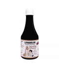 Liverolin Liver Performance Booster 200ml Dog and Cat Appetite Enhancer