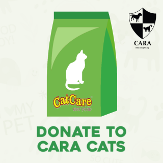 DONATE TO CARA - 1 bag of Cat Food