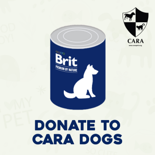 DONATE TO CARA - 1 can of Dog Wet Food