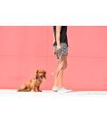 Zee Dog Phantom Dog Leash