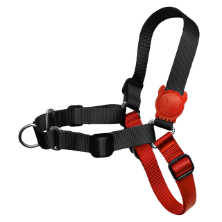 Zee.Dog Fatboy Dog Soft-Walk Harness