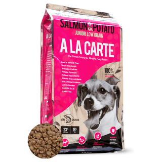 A La Carte Salmon and Potato Dog Dry Food