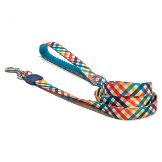 Bullie Rocket Regular Hook Leash
