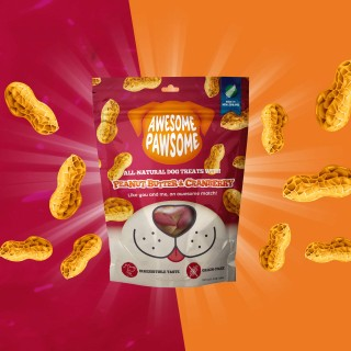 Awesome Pawsome Peanut Butter and Cranberry Grain Free 85g Dog Treats