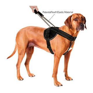 Patento Pet Jockey Medium Dog Harness with Integrated Leash
