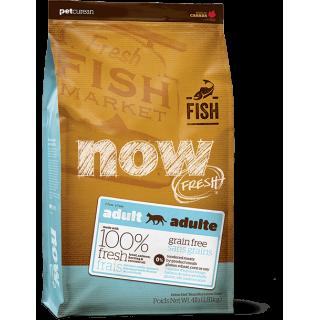 Now Fresh Grain-Free Fish Adult Cat Dry Food