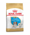 Royal Canin Cavalier King Charles 1.5kg Puppy Dry Food