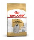 Royal Canin Maltese Dog Dry Food