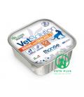 Monge Vet Solution Renal and Oxalate 100g Cat Wet Food