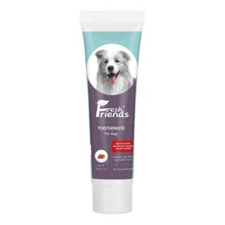 Fresh Friends Beef 90g Dog Toothpaste