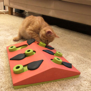 Nina Ottosson Melon Madness Puzzle & Play Cat Toy - Level 2