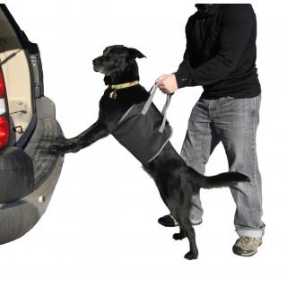 Outward Hound PupBoost Lift Dog Harness