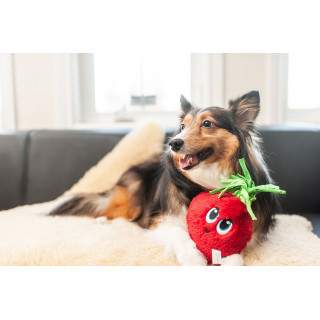 Outward Hound Fetchtables Beet Dog Toy