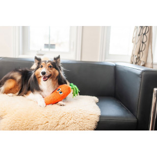 Outward Hound Fetchtables Carrot Dog Toy