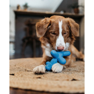 Charming Pet Latex Rubber Balloon Large Dog Toy