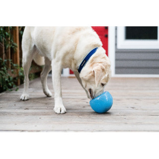 Planet Dog Orbee-Tuff Snoop Blue Dog Toy