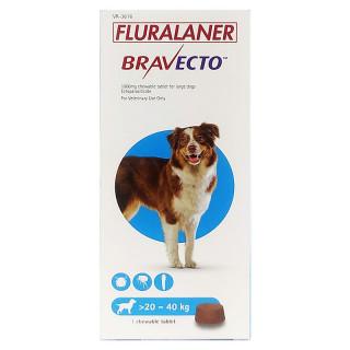 Bravecto Chewable Tablet Dog Ectoparasiticide