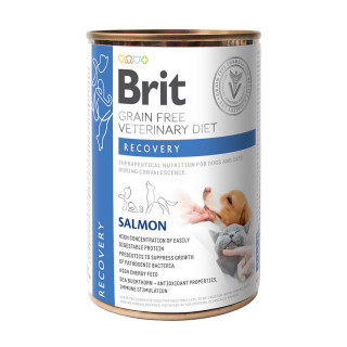 Brit Grain Free Veterinary Diet Recovery Salmon 400g Dog and Cat Wet Food