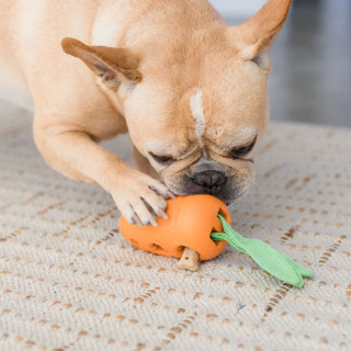 Petstages Carrot Stuffer Dog Toy