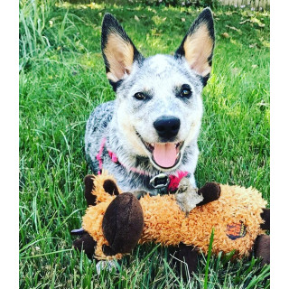 Charming Pet Scruffles Moose Small Dog Toy