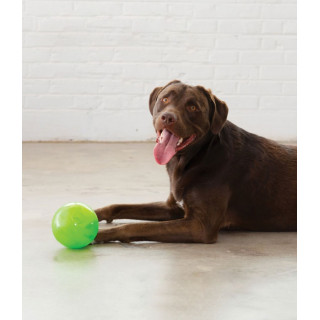 Planet Dog Orbee-Tuff Mazee Interactive Dog Toy