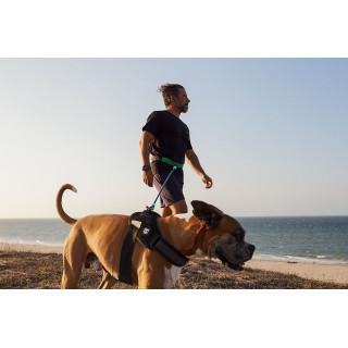 Zee.Run Running Belt for Dogs