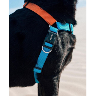 LIMITED EDITION Zee.Dog Delta No-Pull Soft-Walk Dog Harness