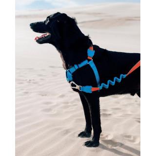 LIMITED EDITION Zee.Dog Ruff Delta Large Dog Leash