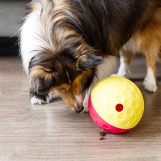Nina Ottosson Treat Tumble Dog Toy - Level 1