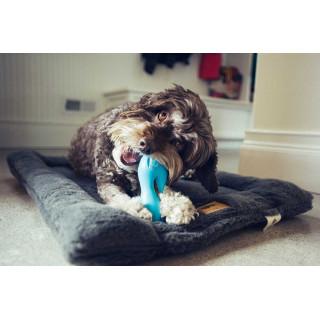 West Paw Qwizl Dog Toy