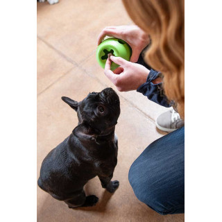 West Paw Rumbl Dog Toy