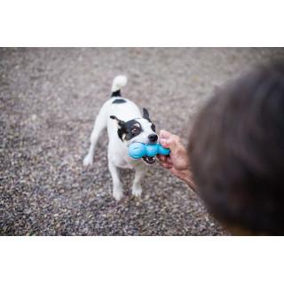 West Paw Rumpus Dog Toy