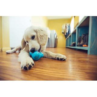 West Paw Tux Dog Toy