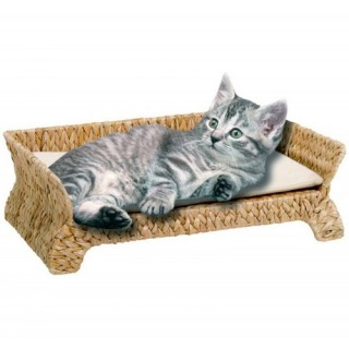 Catit Banana Leaf Daybed Cat Bed