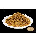 Kit Cat Pick of the Ocean Cat Dry Food