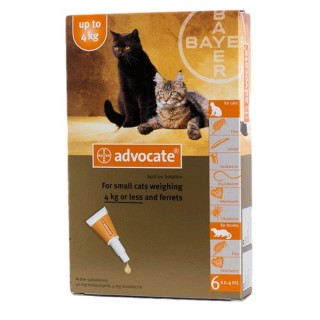 Advocate Flea & Tick Spot On for Small Cats up to 4kg (3 x .4ml pipettes)