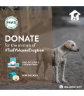 Donate to PAWS - Taal Rescue Effort